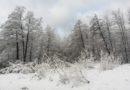 Do kraja dana stiže ozbiljna promjena vremena, meteorolozi najavili snježni pokrivač i u nizinama