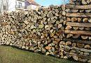 Osumnjičeni za krađu drva
