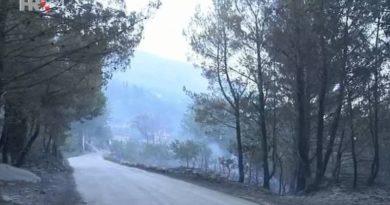 požar šuma