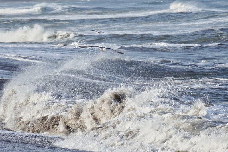valovito more