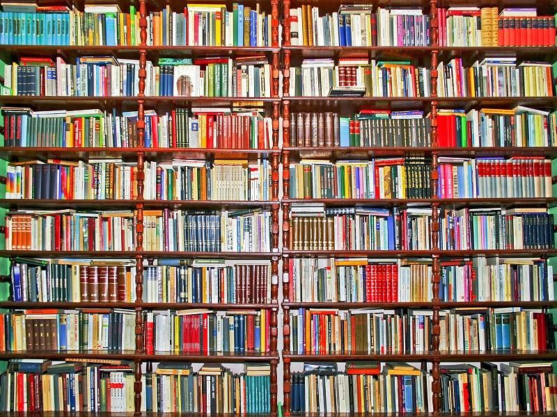 Books shelf