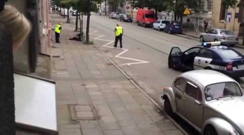 policija poljska