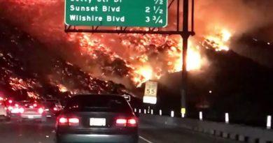 Los Angeles požar