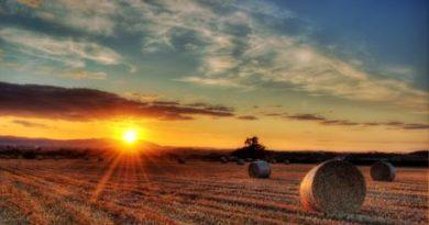 otvaranje-obiteljskog-poljoprivrednog-gospodarstva-u-mirovini-2638-1[1]