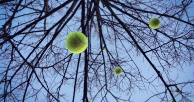 tenis turnir ist