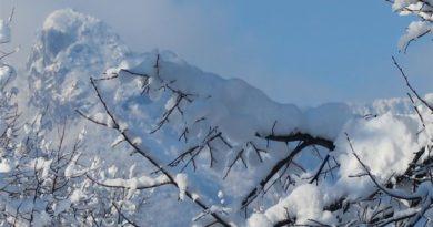 klek u snijegu ist