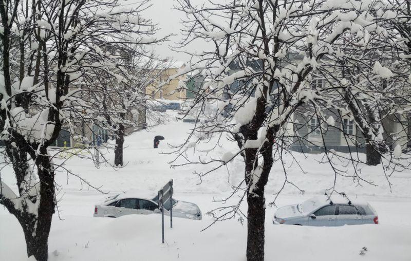 snijeg ogulin