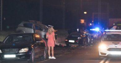 prometna nesreća 733