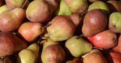 pears-3670679_1280
