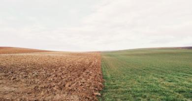 Grad Ogulin je lani za poljoprivredu izdvojio 214.419,71 kuna