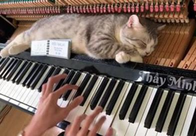 Klavirska masaža