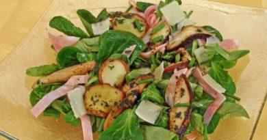 vrganji-na-salatu-img