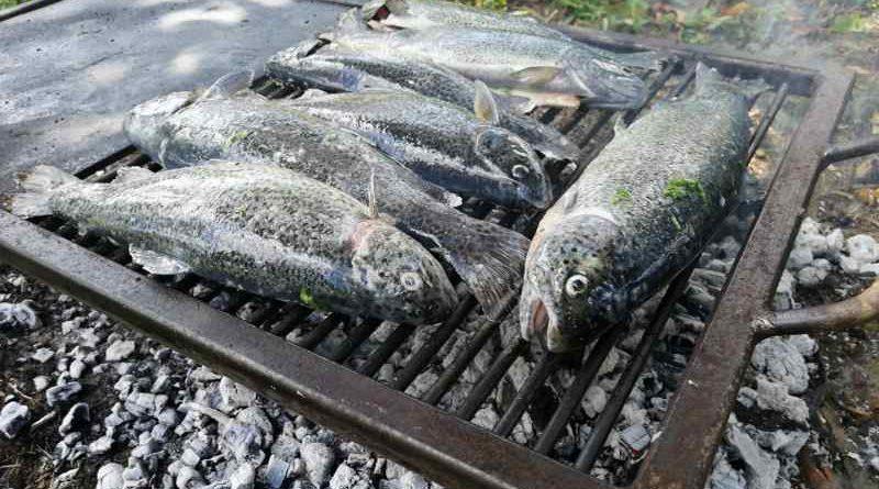 ribe na gradelama ist