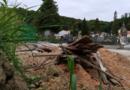 Iskopani komadi lijesova na katoličkom groblju Dubovac zgrozili našeg čitatelja, o čemu se radi provjerili smo u Zelenilu