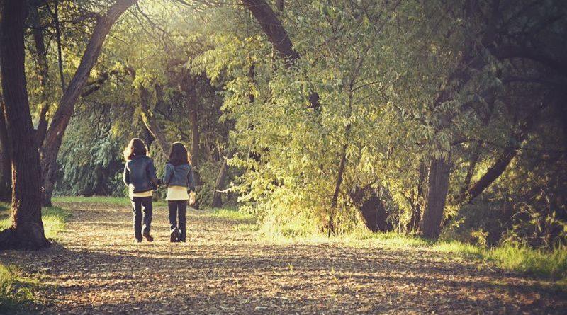 šetnja jesen priroda ,mist