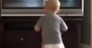Mini Rocky postao viralni hit: Odradio je trening bez greške!