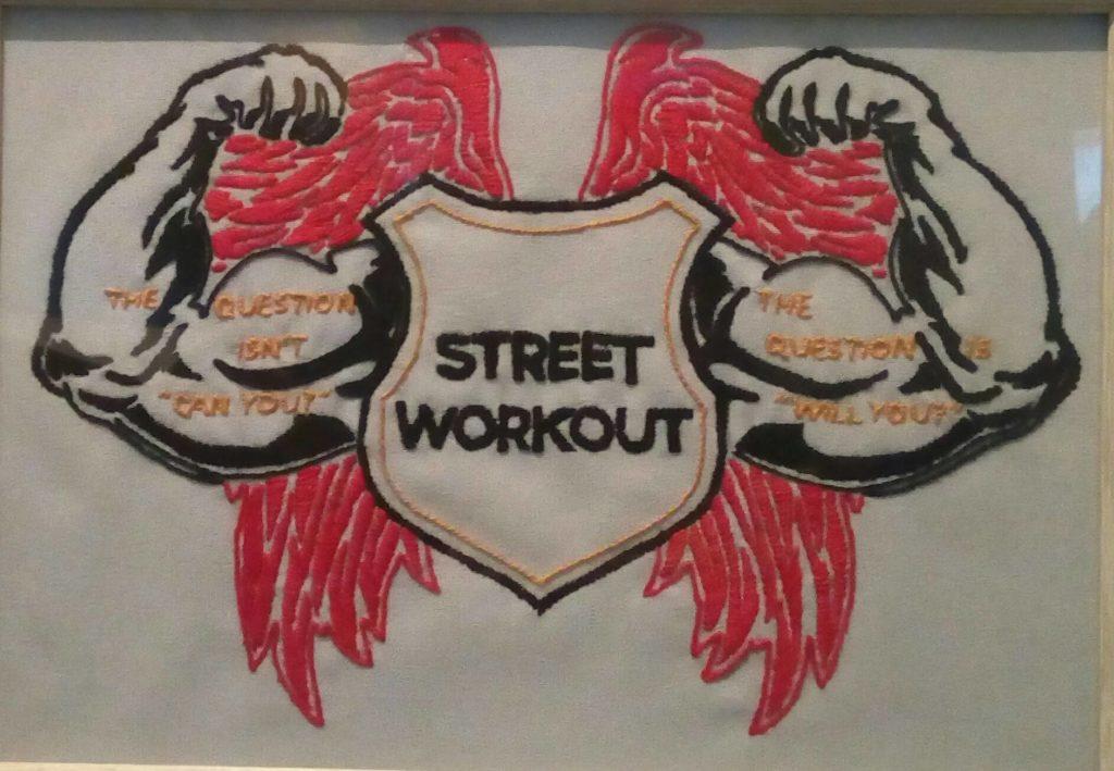 4. STREET WORKOUT (vez na platnu)