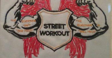 4. STREET WORKOUT (vez na platnu) ist