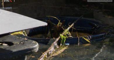 morska kanta za smece ist