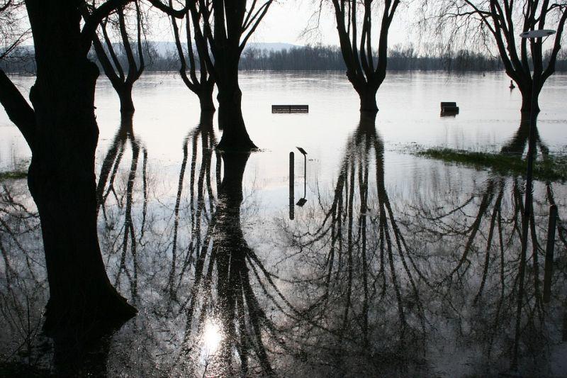 poplava opća ist