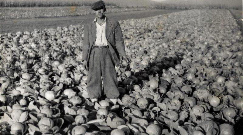 Ogulinski poljoprivrednik zelje nekad