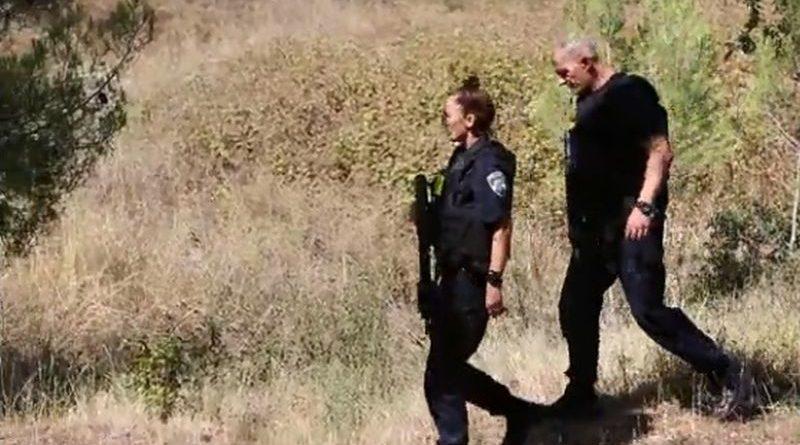 policija u potrazi ist