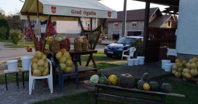 Plodovi jeseni na kućnom pragu