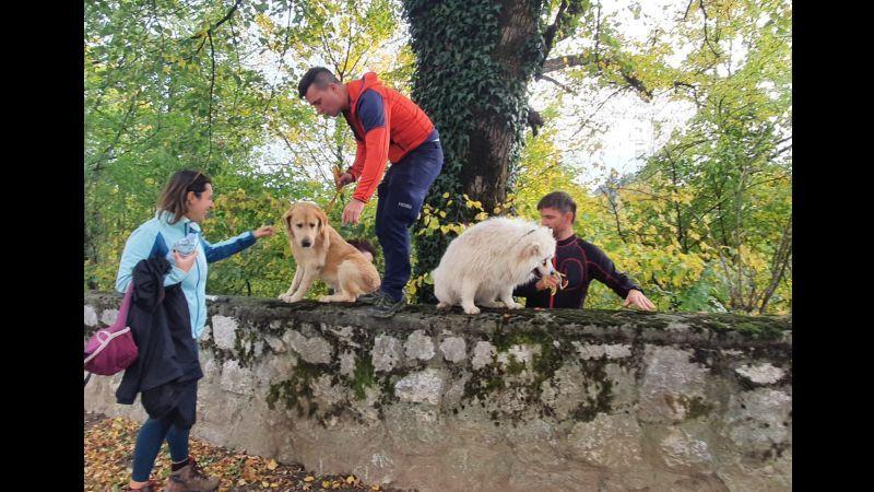 spašavanje psa iz đule ist