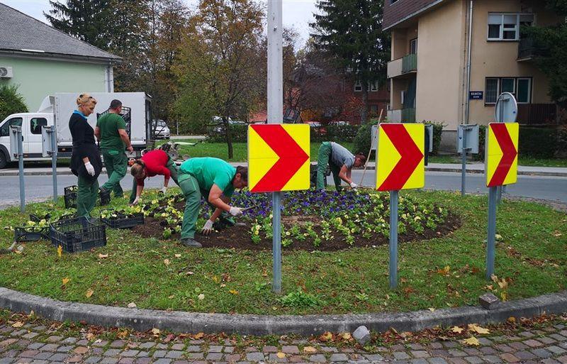 uređenje gradskog zelenila 10 2020 ist