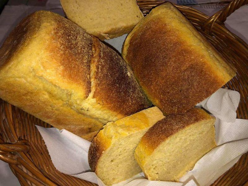 zlatni kruh mivit ist